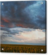 Song Of Moses Acrylic Print