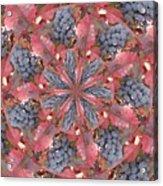 Sonoma Vines Acrylic Print