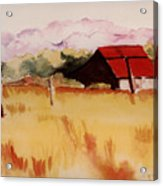 Sonoma Wheatfield Acrylic Print by Patricia Halstead