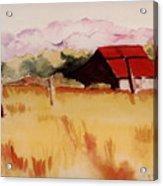 Sonoma Wheatfield Acrylic Print