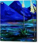 Sonora Acrylic Print