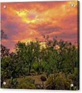 Sonoran Desert Sunset H44 Acrylic Print