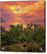Sonoran Desert Sunset Op46 Acrylic Print