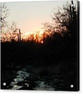 Sonoran Sundown Acrylic Print