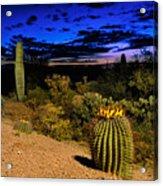 Sonoran Twilight Acrylic Print