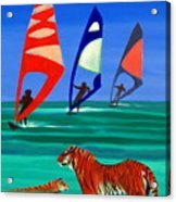 Tigers Sons Of The Sun Acrylic Print