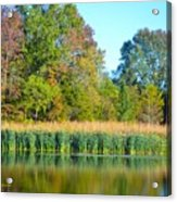 Soothing Reflections Acrylic Print