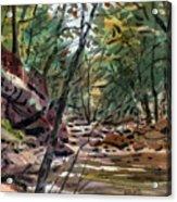 Sope Creek Three Acrylic Print