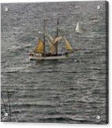 Soren Larsen Tall Ship Enters Sydney Harbour Acrylic Print