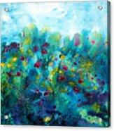 Soren Splash Acrylic Print