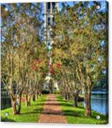 Sounds Of Victory The Bell Tower Furman University Greenville South Carolina Art Acrylic Print