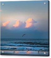 South Carolina Sunrise Acrylic Print