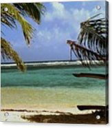 South Caye Belize Acrylic Print