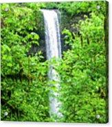 South Falls Acrylic Print