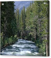 South Fork San Joaquin River - Kings Canyon National Park Acrylic Print