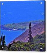 South Kona Coastline Acrylic Print