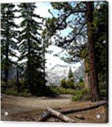 South Lake Tahoe Mountain Trail Acrylic Print