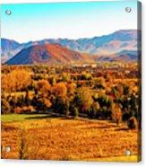 South Reno In Fall Acrylic Print