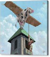 Southampton Cow Flight Acrylic Print by Martin Davey