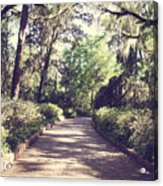 Southern Beauty 2 - Tallahassee, Florida Acrylic Print