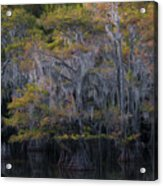 Southern Colors Acrylic Print