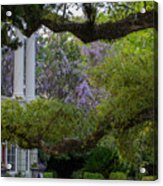Southern Columns Acrylic Print