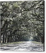 Southern Homecoming Acrylic Print
