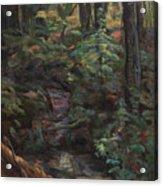 Southern Jungle Acrylic Print