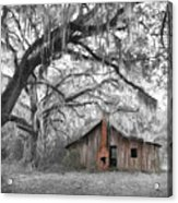 Southern Past Ll Acrylic Print