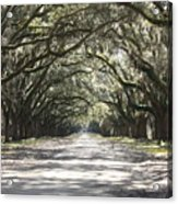 Southern Road Acrylic Print