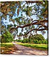 Southern Serenity Acrylic Print