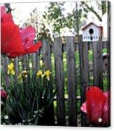 Southside Poppy Garden Acrylic Print