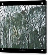 Southwind Woods Acrylic Print