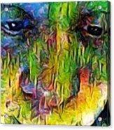Sp Fbm Mode 4.5.18 Acrylic Print