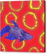 Space Fish Acrylic Print by Rishanna Finney