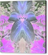 Space Lily Acrylic Print by Roxy Riou