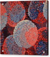 Spacial Hydrangeas Acrylic Print