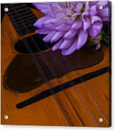 Spanish Mandolin And Dahlia Acrylic Print