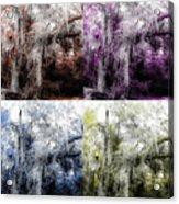Spanish Moss Beauty Of Color Acrylic Print