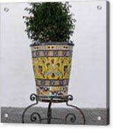 Spanish Planter Acrylic Print