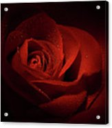 Sparkling Red Rose Acrylic Print