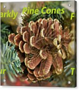 Sparkly Pine Cones For Your Tree  Acrylic Print
