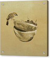 Sparrow And Bowl Of Cherries Acrylic Print