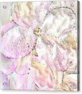Speak Softly Pink Acrylic Print