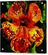 Speckled Petunia Acrylic Print
