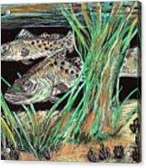 Specks In The Grass Acrylic Print by Robert Wolverton Jr