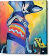Sphynx Cats Friends Acrylic Print
