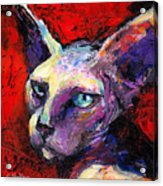Sphynx Sphinx Cat Painting  Acrylic Print
