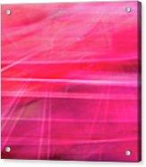 Spider Lily Bottom Acrylic Print