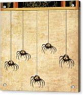 Spiders For Halloween Acrylic Print